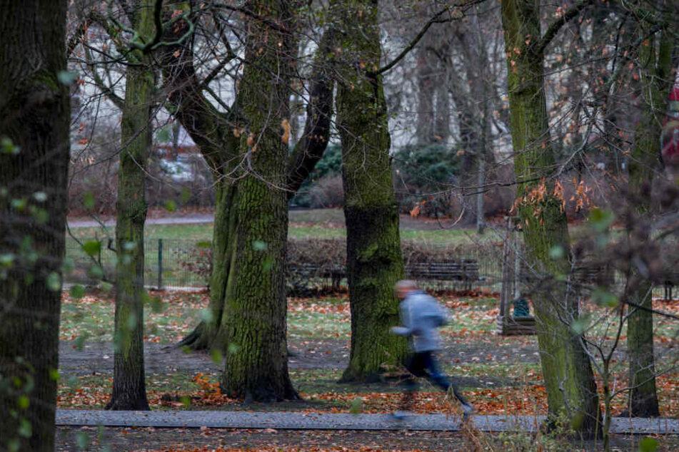 Der Überfall fand im Berliner Bezirk Pankow statt, dort befindet sich auch der hier gezeigte Bürgerpark. (Symbolbild)
