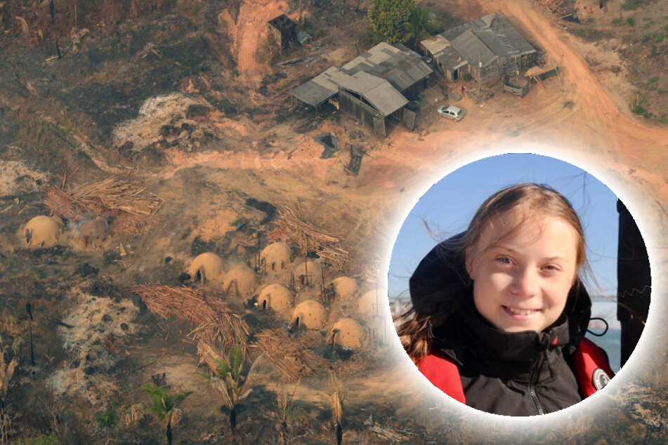 Greta Thunberg und Greenpeace teilen erschütternde Bilder