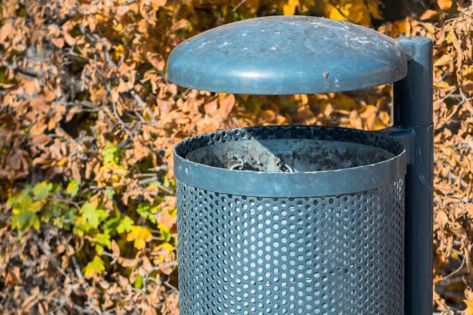 Die Polizeibeamten staunten wahrscheinlich nicht schlecht, als die das Innere der Mülltonne untersuchten und den Verursacher der Geräusche entdeckten. (Symbolbild)