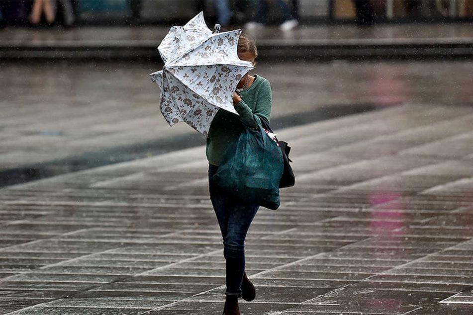 Ein Regenschirm wird bei prognostizierten 90 bis 100 km  h keinen Unterschied machen