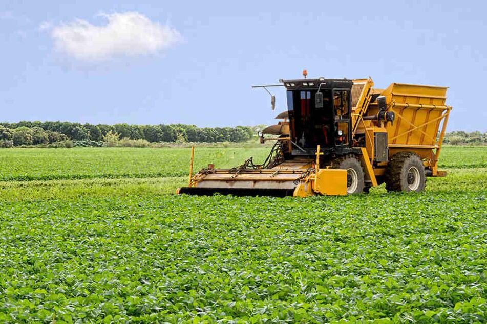 Die Erntemaschine überschlug sich, weil die geladenen Erbsen verrutscht waren. (Symbolbild)