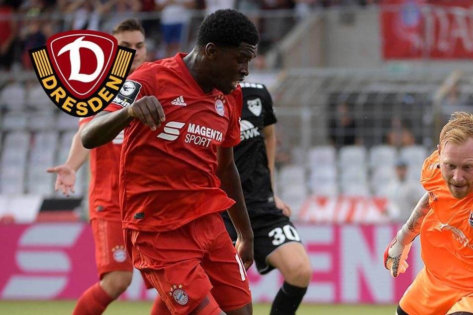 Dynamo auf Stürmersuche! Schlägt die SGD beim FC Bayern München zu?