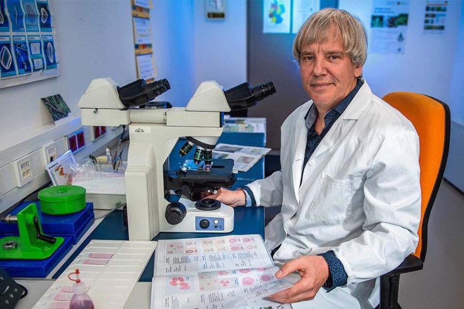 Umweltmediziner Dr. Mario Hopf (59) wertet die Pollenproben am Mikroskop aus.