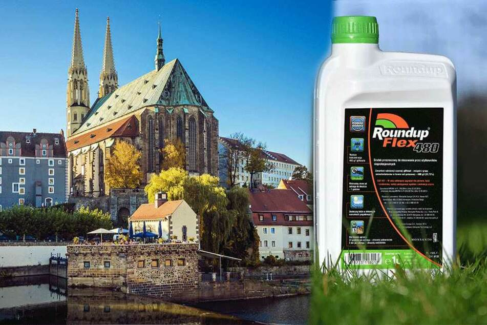 Das Rathaus hat nachgerechnet: Giftfreies Görlitz ist leider nicht billig