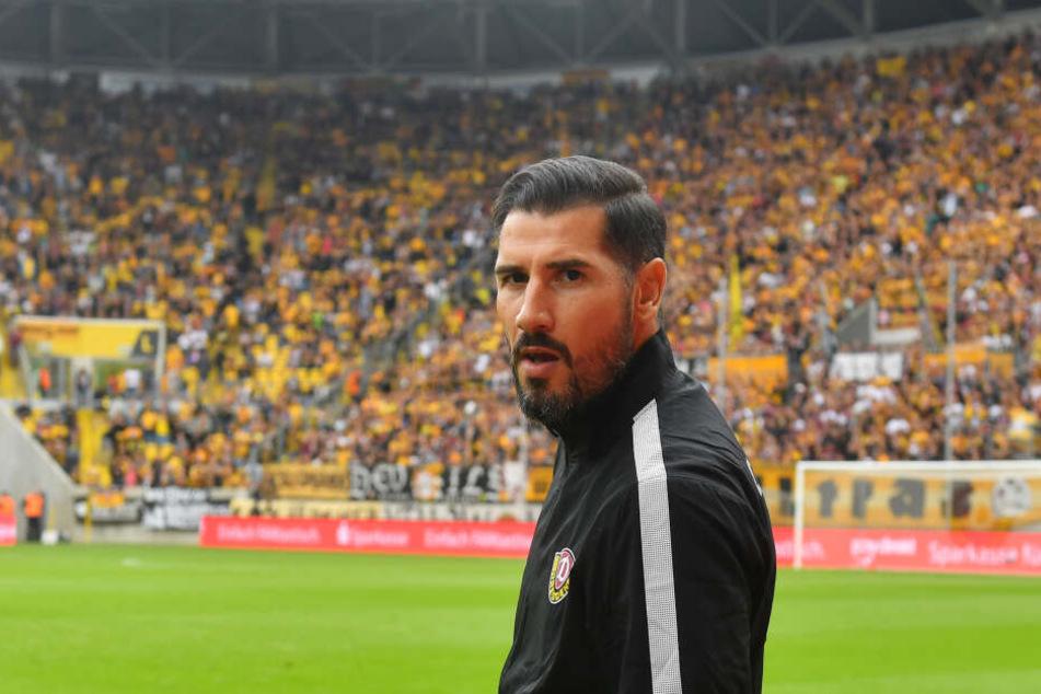 Cristian Fiel wird neuer Dynamo-Coach.