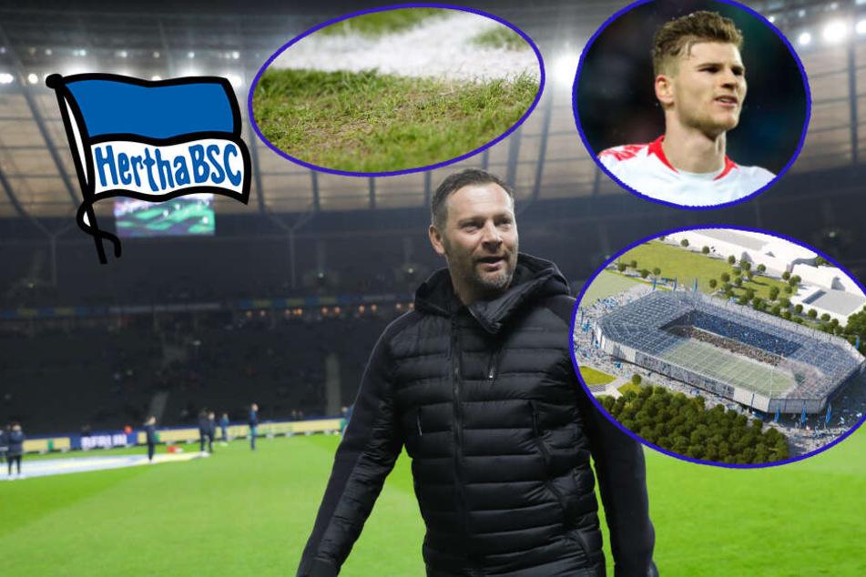 Hertha-Dreier: Neuer Rasen, Stadion-Debatte und Siegesformel gegen Leipzig!