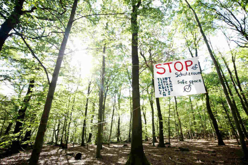 Ein Plakat im Wald.