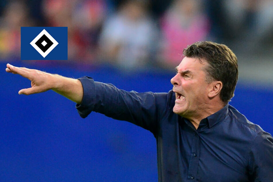"""HSV-Trainer Hecking warnt vor """"gestandener Zweitliga-Mannschaft"""" aus Aue"""