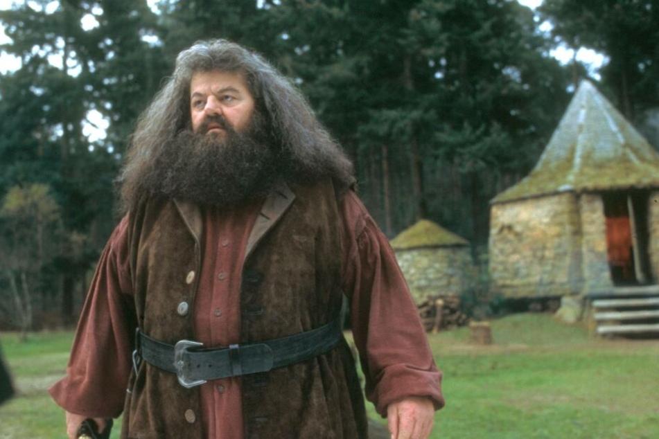 In der Rolle des Hagrid wurde Robbie Coltrane bekannt.