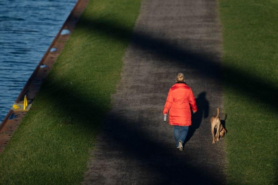 Die Frau war mit ihrem Hund am Deich spazieren gegangen. (Symbolbild)