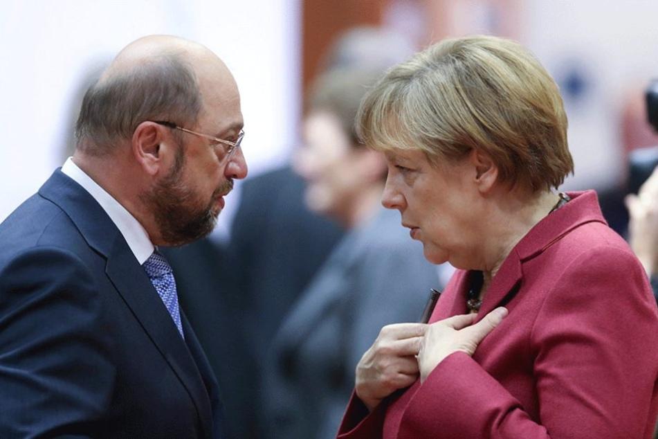 Angela Merkel und Martin Schulz treten als Kanzlerkandidaten gegeneinander an.