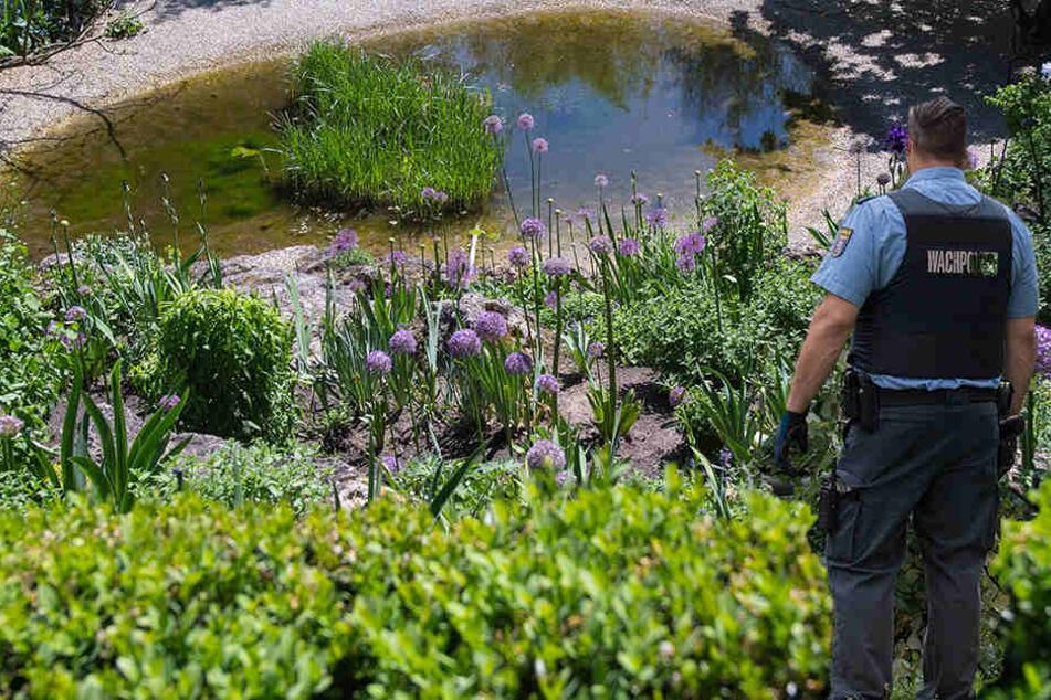 Bei Arbeiten an einem Teich ist ein 48-Jähriger ins Gewässer gestürzt (Symbolbild).