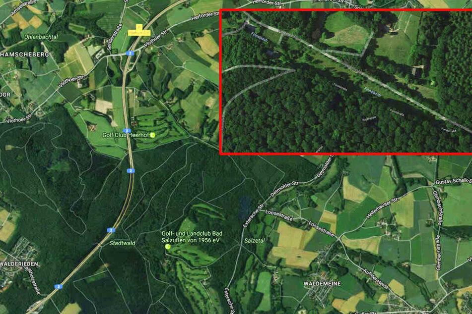 Der Finnebach grenzt an Vlotho. Durch Gärsaft wurde er Anfang Februar verseucht.