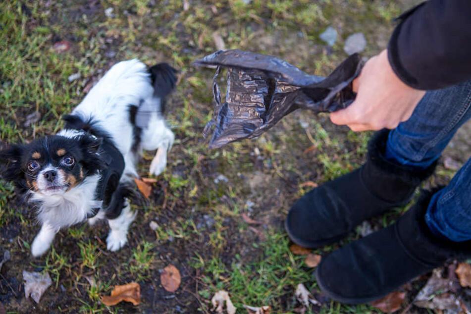 So gehört sich das! Hundehalterin Sandra R. (37) hat immer genügend Tüten dabei, wenn sie mit Hundedame Pelusa Gassi geht.