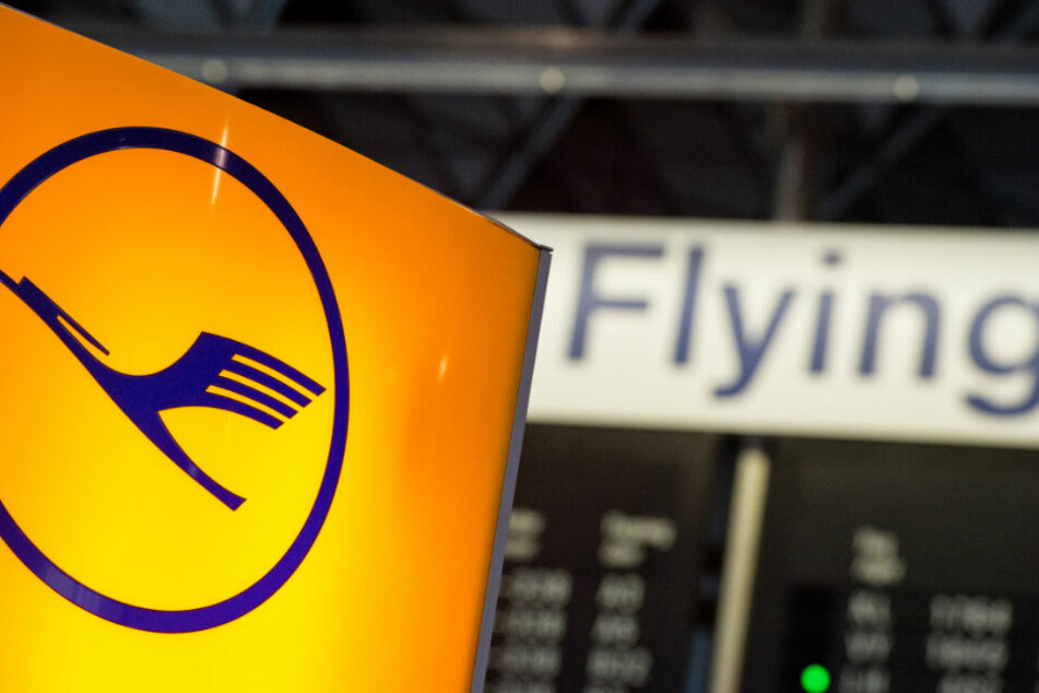 Ein Streik der Flugbegleiter könnte zu erheblichen Flug-Ausfällen bei der Lufthansa führen (Archivbild).