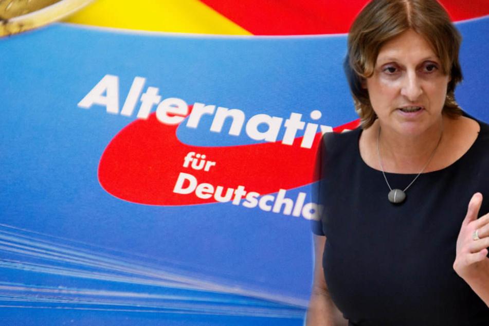 Auf Berlin folgt Brandenburg: Nächstes AfD-Lehrermeldeportal online