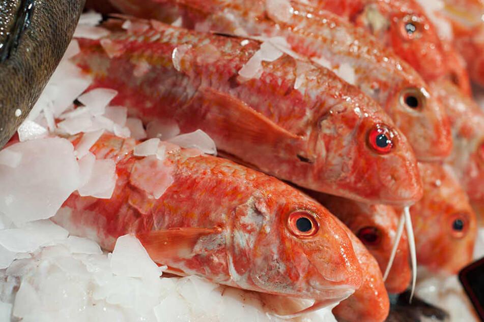 Der Fisch aus Vietnam ist mit Algentoxinen verseucht.
