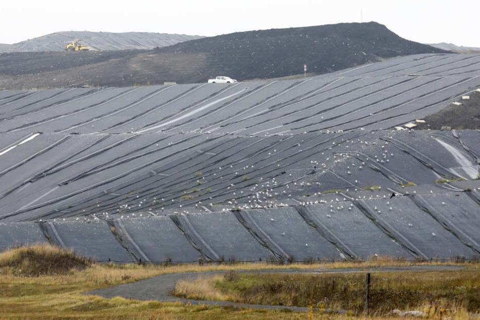 Mit schwarzer Plane wird ein Teil der Deponie Ihlenberg abgedeckt.