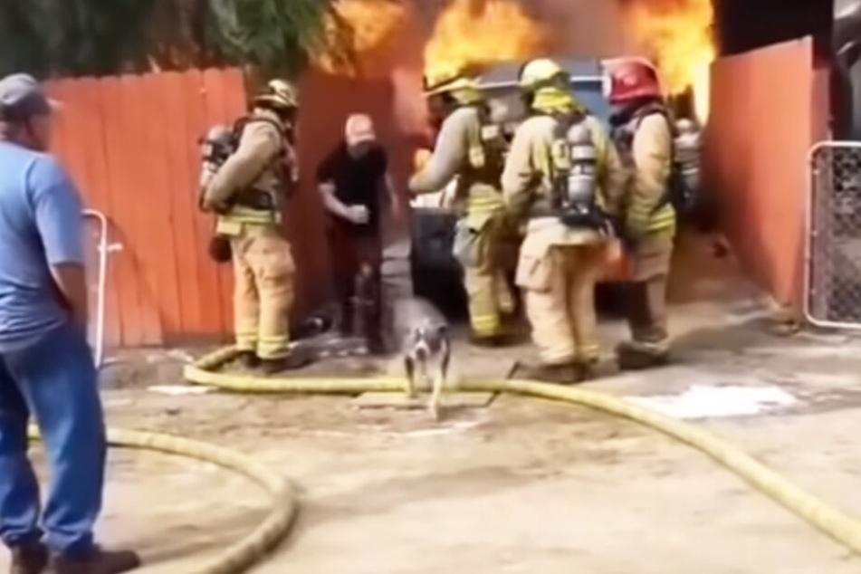 Gemeinsam mit seiner Hündin kommt der Mann aus dem brennenden Haus gerannt.
