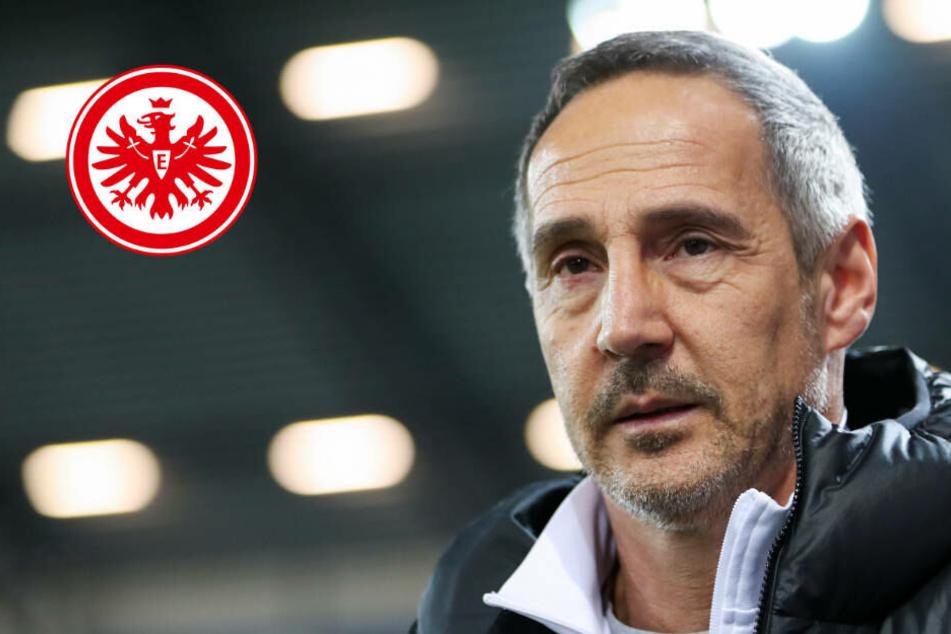Eintracht im Trainingslager: So will Adi Hütter die Krise bewältigen