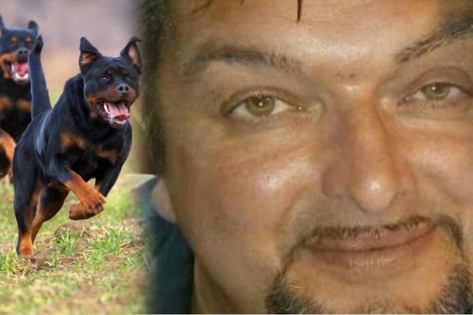 Hunde zerfleischen Herrchen (†49) vor seiner verstörten Freundin