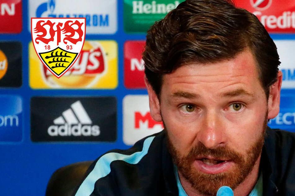 Wird Ex-Chelsea-Coach der Weinzierl-Nachfolger beim VfB Stuttgart?