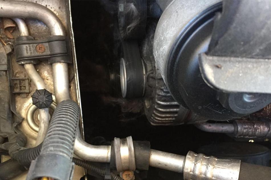 Im Motorraum sind noch deutlich Spuren von der Katze zu erkennen.
