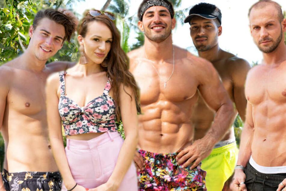 Fünf sexy Singles aus Köln sollen fremde Pärchen in Versuchung führen
