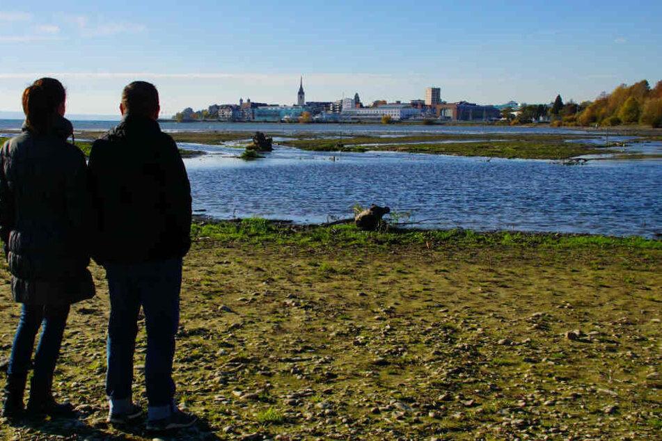 Der Wasserstand des Bodensees ist derzeit sehr niedrig.
