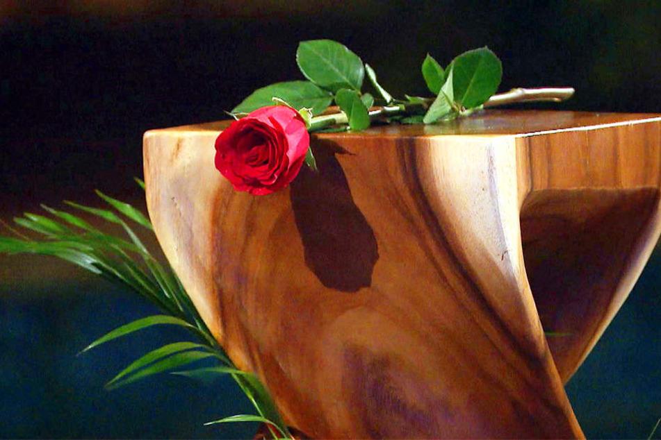 Wer bekommt diesmal eine Rose? Welche Paare dürfen zum Dreamdate. Die Antworten liefert TV-Sender RTL in der letzten Folge seiner Dating-Show.