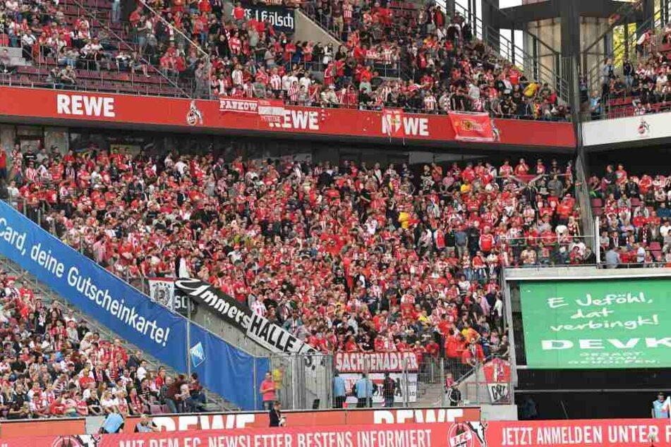 Nach dem Spiel gegen Köln wurde ein Fanbus von Union Berlin attackiert.