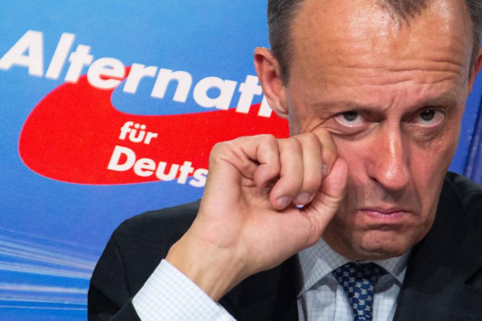 Friedrich Merz (63) kritisiert den Umgang seiner CDU mit der AfD in den letzten Jahren.
