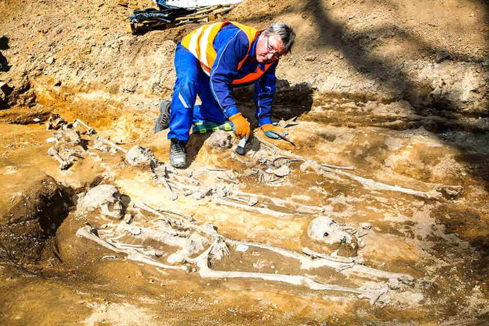 46 Tote am Rathaus entdeckt: Wurden hier Sklaven begraben?