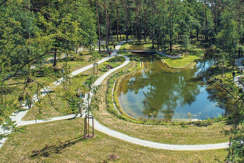Letzte Ruhe auf der Insel: Das ist Dresdens erster Toten-Teich