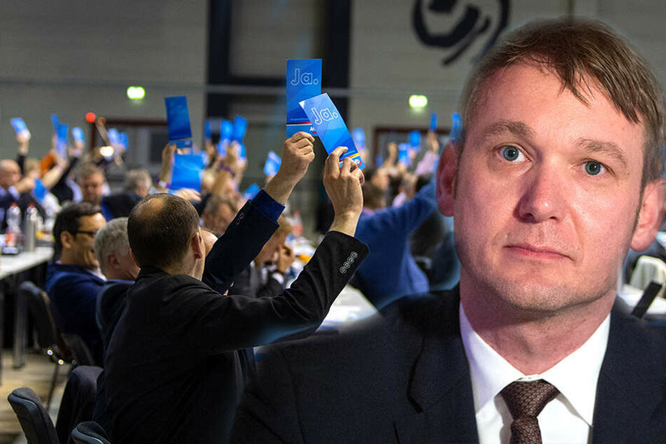 """Zoff im rechten Lager: Sind AfD und Poggenburgs """"Patrioten"""" zu ähnlich?"""