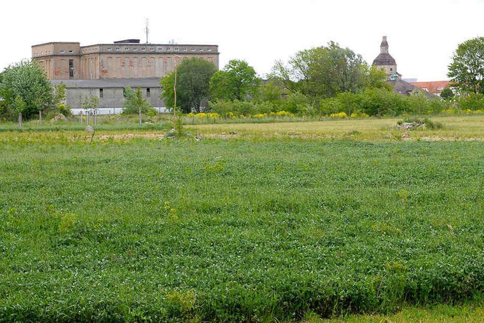 Die alte Fettschmelze im Ostragehege bietet Platz für mehrere Fußballfelder.