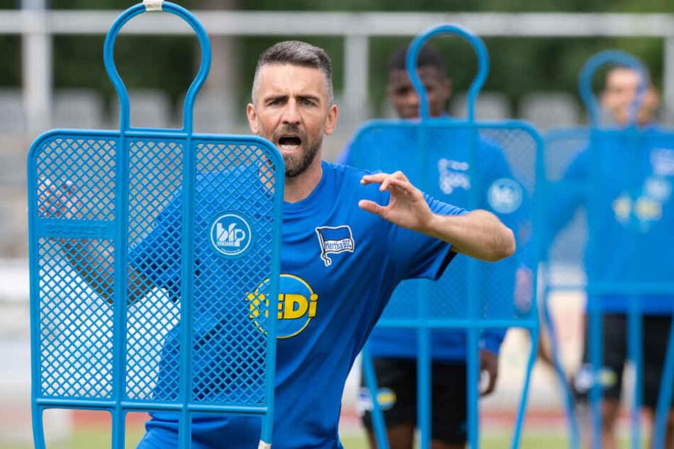 Traf zum zwischenzeitlichen 2:0 gegen Fenerbahce: Kapitän Vedad Ibisevic.