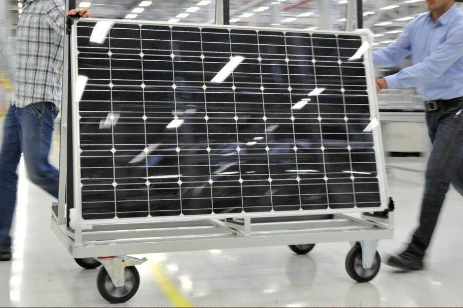 Falsch deklarierten Solarmodule aus China könnten ein Fall für die Gerichte werden. (Symbolbild)