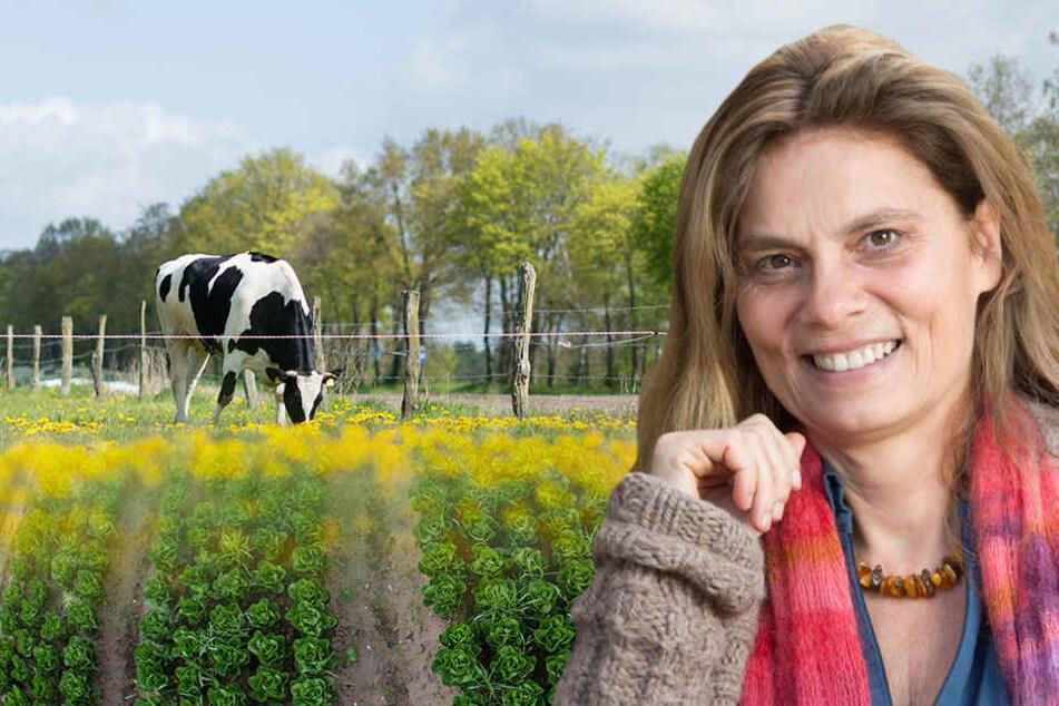 Auch die österreichische Köchin Sarah Wiener möchte in den brandenburgischen Bio-Markt einsteigen und hat gemeinsam mit Freunden vor zwei Jahren ein Gut bei Angermünde gekauft. (Symbolbild)