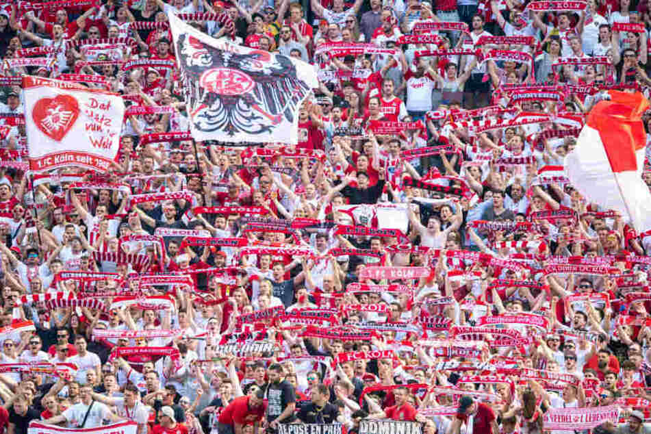 Die Köln-Fans beim Spiel gegen den FC Bayern München.