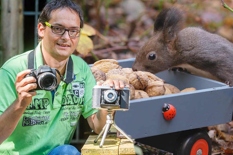 Chemnitz: Er ist der Eichhörnchen-Flüsterer vom Zauberwald
