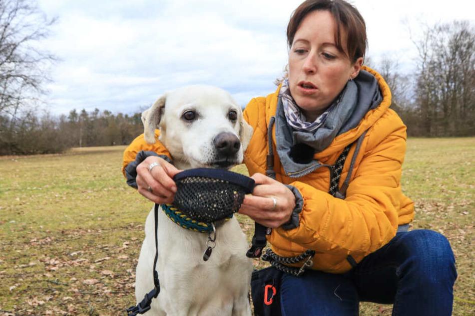Nadine S. aus Nürnberg hat große Angst um ihren geliebten Hund Camino.