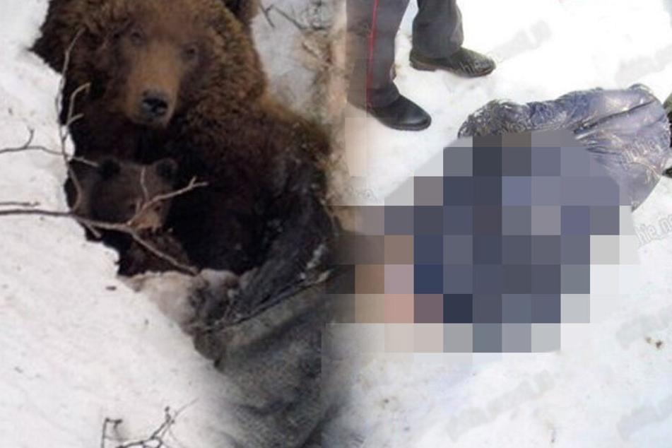 Horror-Fund! Mumifizierte Leiche mit ausgehöhlten Augen in Bärenhöhle entdeckt