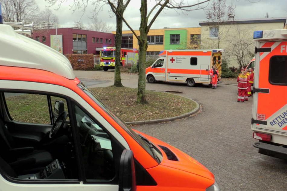 Erneuter Großeinsatz der Rettungskräfte an der Käthe-Kollwitz-Schule.