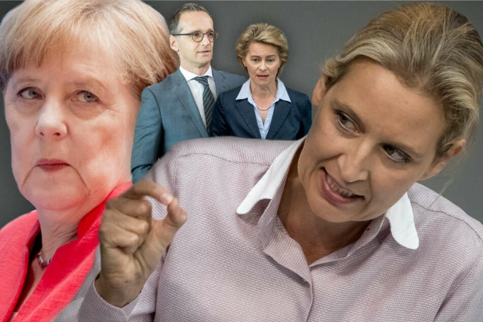 """AfD-Weidel: """"Das Beste für Deutschland, wäre ein Ende der Bundesregierung"""""""