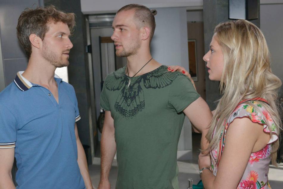 Das Dreiecks-Drama zwischen Felix (l.), Chris und Sunny soll endlich ein Ende nehmen.