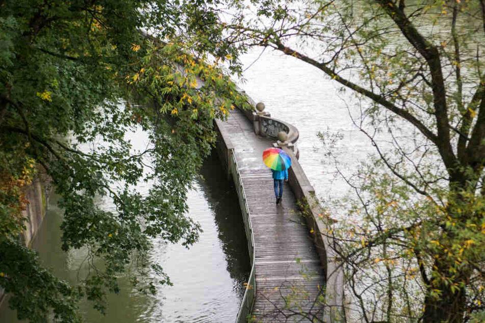 Wer am Wochenende in die Natur will, sollte einen Schirm dabei haben. (Symbolbild)