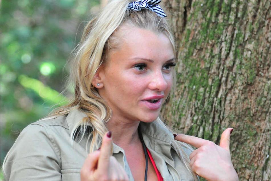 Dschungelcamp Am Tag 6 Yotta Vergeigt Prüfung Und Evelyns