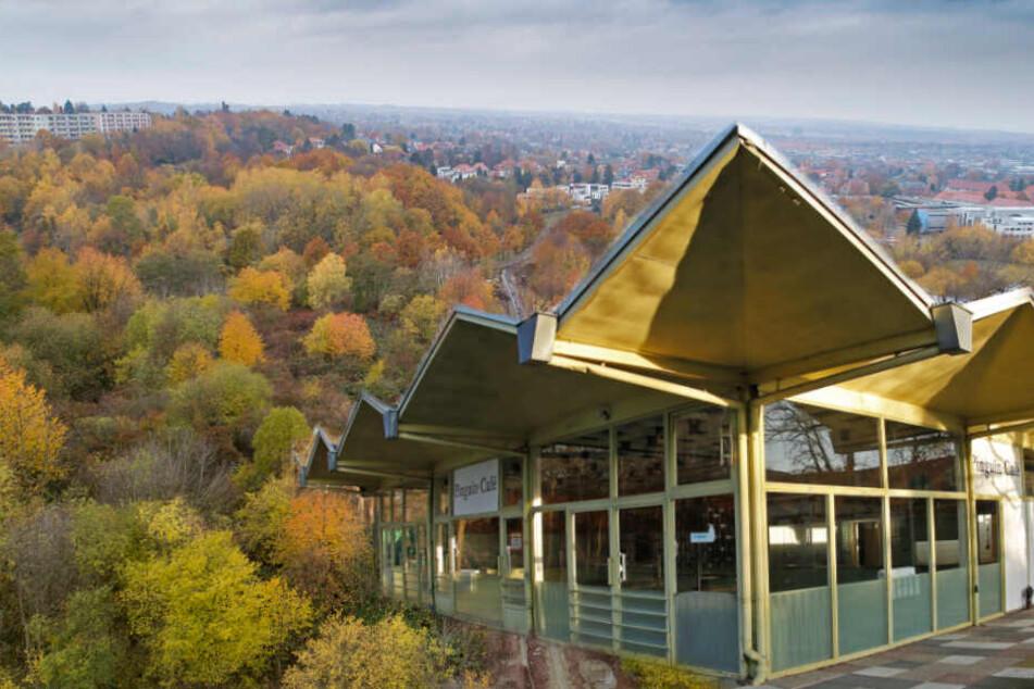 Findet das alte Pinguin-Café im Südpark eine neue Heimat? Der erstreckt sich insgesamt auf 36 Hektar.