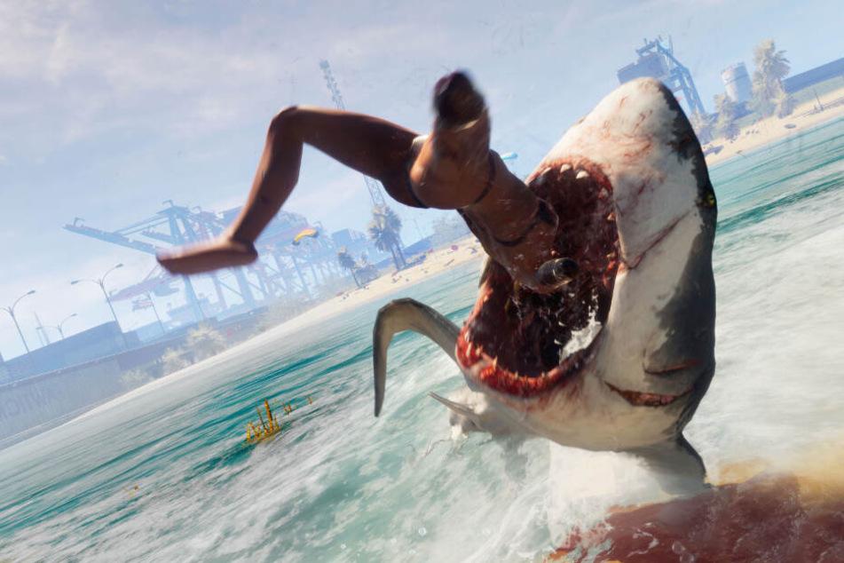 Haißhunger? Neben Meeresbewohnern wird auch Jagd auf Strandbesucher gemacht.